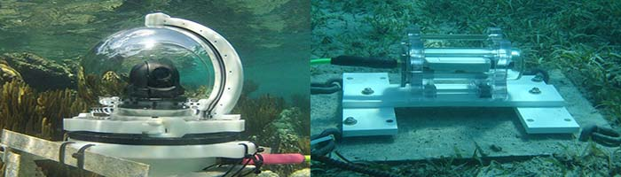 Underwater Webcams